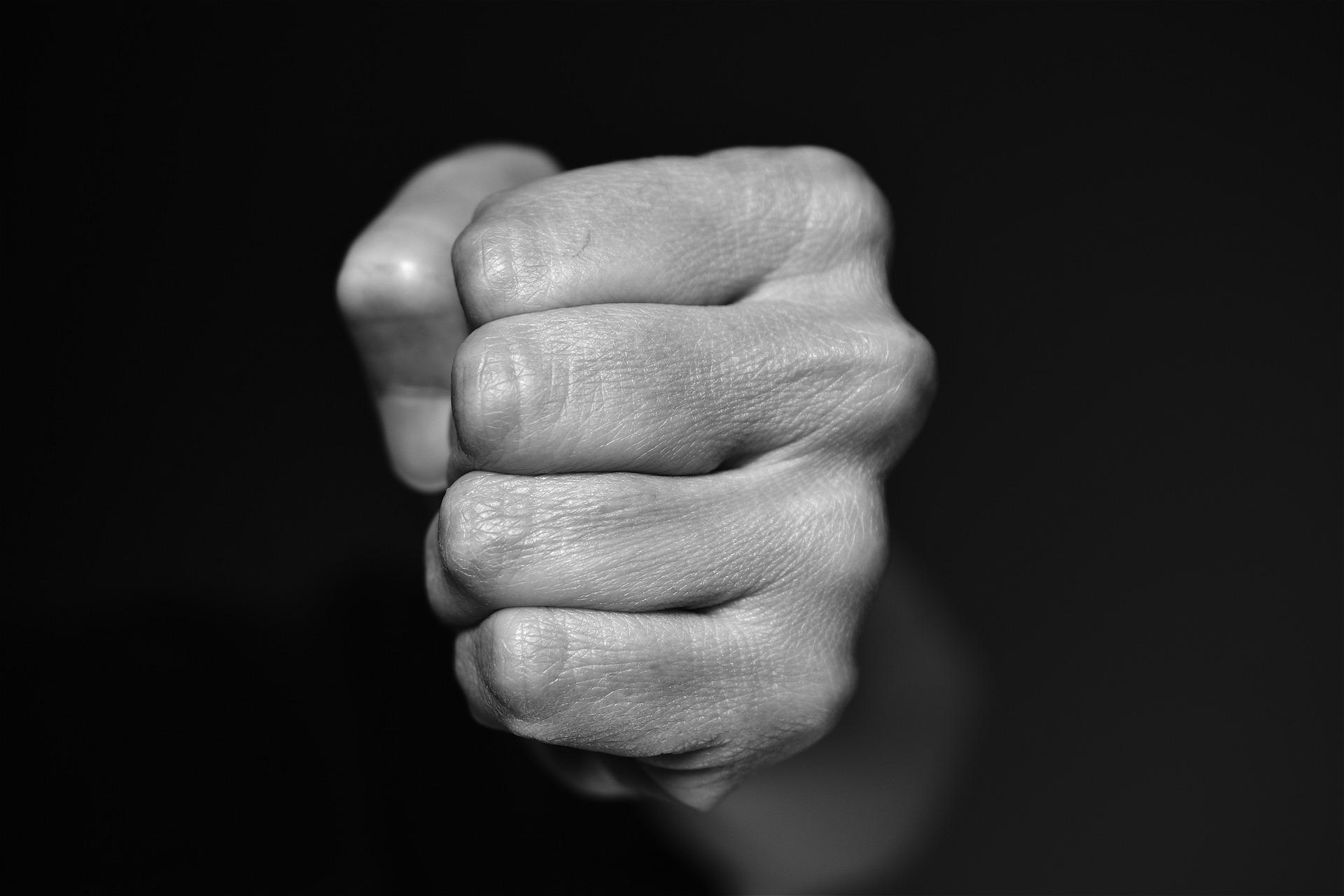 fist-4117726_1920
