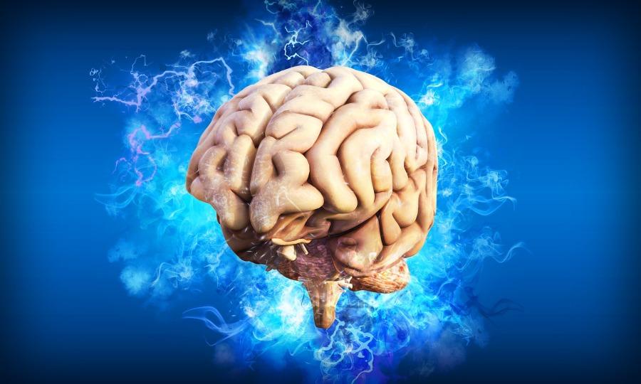 Co się dzieje w mózgu gdy choruję nadepresję?